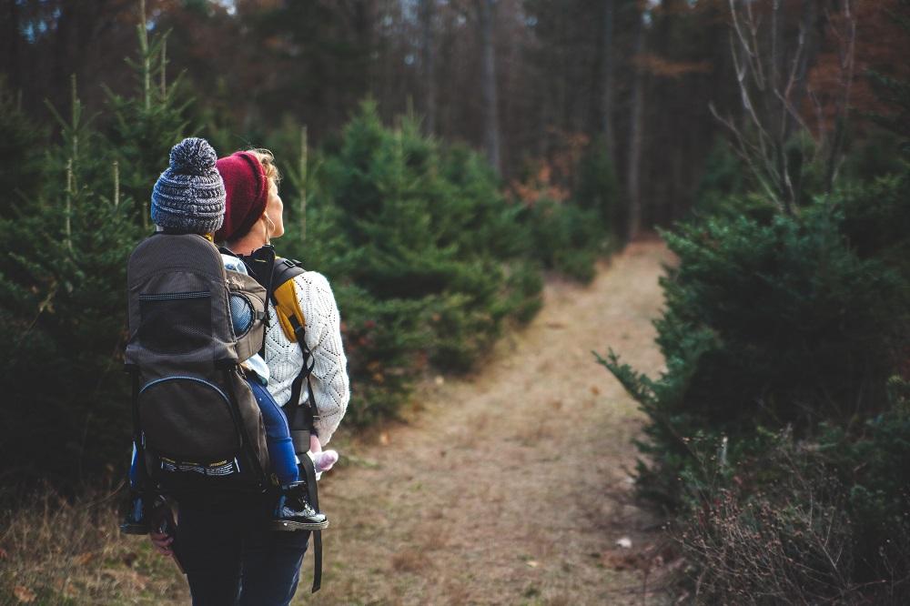 Balade en forêt : comment habiller vos enfants?